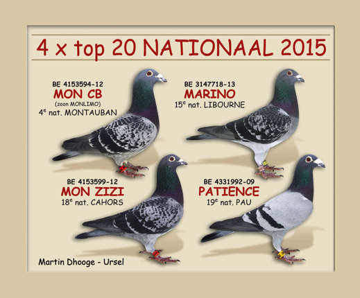 4x top 20 nationaal 2015